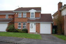 house to rent in Shillingheld Close...