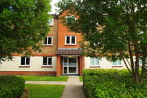 Hart Street Apartment to rent