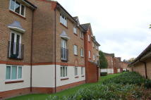 Lindisfarne Gardens Apartment to rent