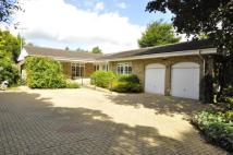 3 bed Bungalow in Clara Drive, Calverley...
