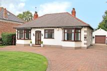Detached Bungalow for sale in ELLERS ROAD, Doncaster...