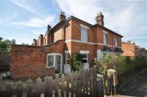 Detached house to rent in Albany Road, Worcester