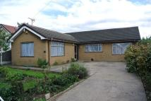 Detached Bungalow in Westfield Drive, Worksop...