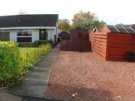 2 bed Bungalow in Roxburgh Drive, Carnbroe...