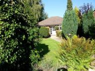 Bungalow to rent in Montreal Road, Sevenoaks