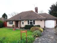 3 bed Bungalow to rent in Chipstead Park...