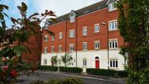 Landfall Apartment to rent