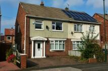 3 bedroom semi detached property to rent in Lea Avenue - Jarrow