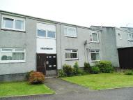 1 bed Flat in Mcintyre Terrace...