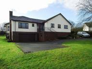 Detached Bungalow in Court Rise...