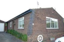 3 bed Detached Bungalow to rent in Beck Lane, Broughton