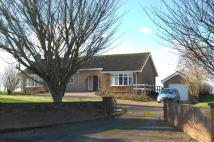 3 bed Detached Bungalow in Moat House Road...