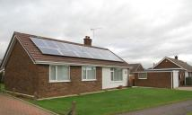 Detached Bungalow for sale in Henderson Way, Scunthorpe