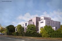 new Flat for sale in Hatherley Road...