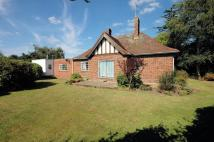 4 bed Detached Bungalow for sale in South Wootton