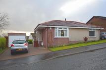Detached Bungalow in Hazel Ave...