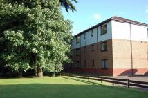 1 bedroom Flat in Achray Avenue...