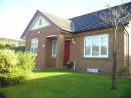 Detached Bungalow to rent in Fern Court, The Highlands