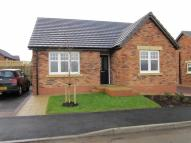 2 bed Detached Bungalow to rent in Lowther Gardens