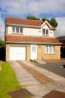 Detached home in Barberry, Coulby Newham...