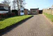 5 bedroom Detached property to rent in Manor Road, Hartlepool...