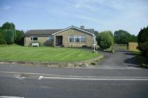 Detached Bungalow for sale in Copley, Bishop Auckland