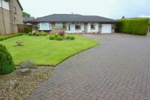 3 bed Detached Bungalow in Whitworth Meadow...