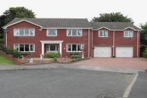 6 bed Detached property for sale in The Copse, Etherley Lane...