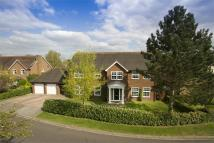 Detached property in Wildcroft Drive...