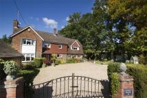 Detached property in Meadow Lane...