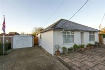 Detached Bungalow for sale in Fordingbridge
