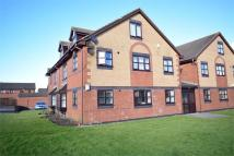 Ground Flat to rent in 23c Oakwood Close...