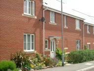 3 bedroom new home to rent in Walsingham Road, Exeter...