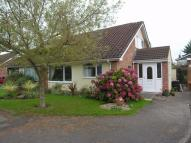 Thornbury Semi-Detached Bungalow to rent