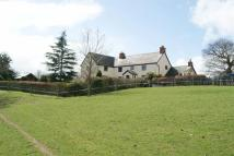 Character Property in St Asaph