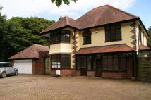 4 bed Detached property to rent in Hollywood...