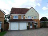 Detached house to rent in Snowdrop Close, Bedworth...