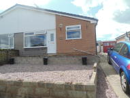 2 bed Semi-Detached Bungalow for sale in Beech Grove, Bagillt...