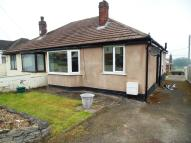 2 bed Semi-Detached Bungalow to rent in Park Drive, Carmel, CH8