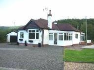 Detached Bungalow for sale in Llangernyw