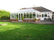 Detached Bungalow for sale in Gravel Hill, Wimborne...