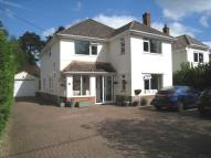 Detached property for sale in The Avenue, West Moors...