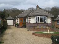 Detached Bungalow for sale in The Vineries, Colehill...