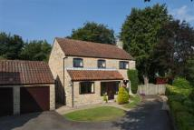 4 bed Detached house in North Grove Mount...