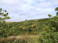 Land and woodland at Polean FarmPelynt Land for sale