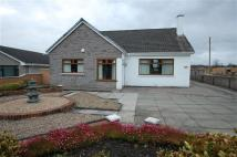 3 bedroom Detached house for sale in Allanton Road, Allanton