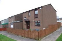 End of Terrace house to rent in Striven Terrace, Hamilton