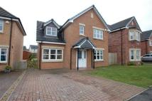 3 bedroom Detached house for sale in Harlequin Court, Hamilton