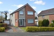 semi detached house to rent in Lochalsh Place, Blantyre
