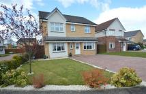 4 bed Detached home for sale in Dalmore Crescent...